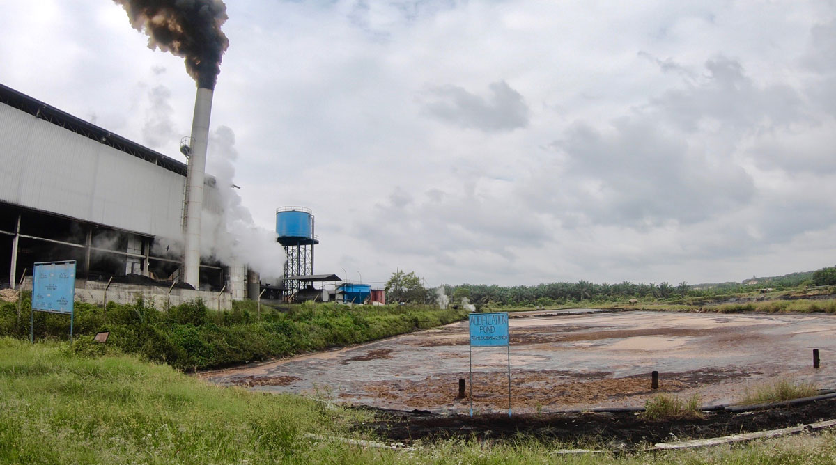 Palm Oil Mill Effluent (POME)