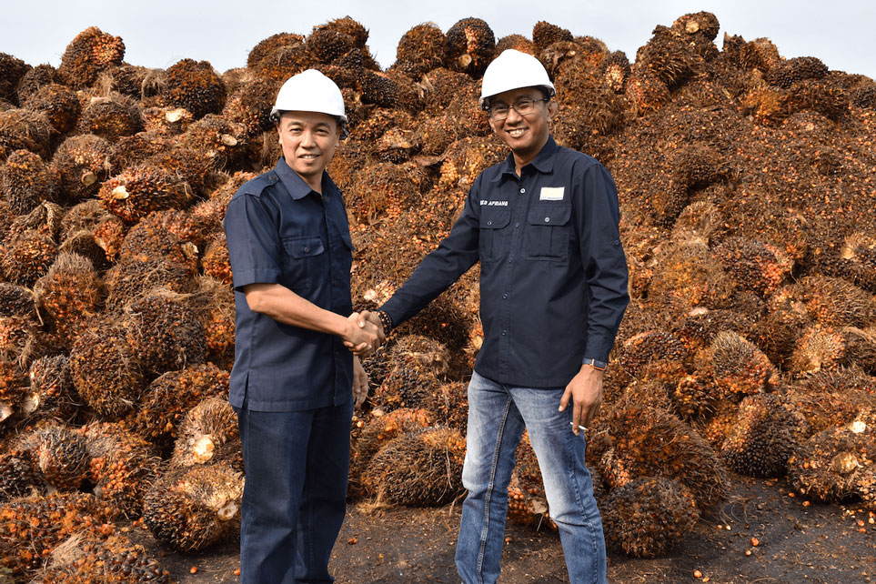 STC Resources Palm Oil Sustainable
